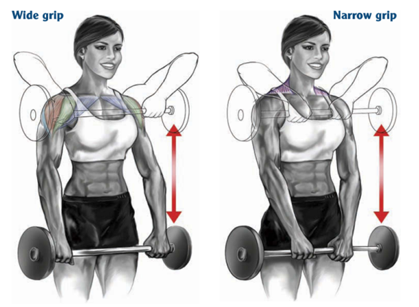 Barbell-Upright-Row-hand-spacing